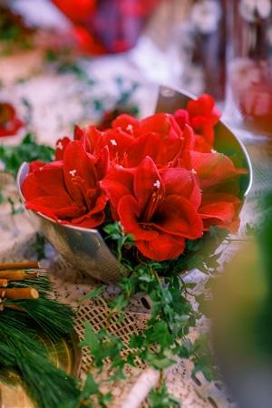 διακοσμηση-χριστουγεννα-γαμοσ