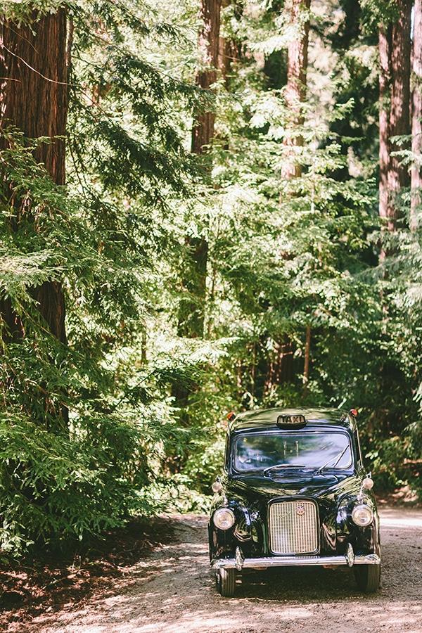 california-redwoods-γαμος (1)