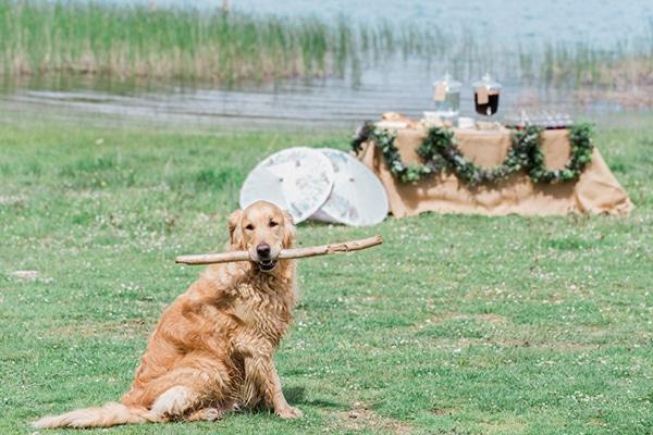 wedding-lake-1