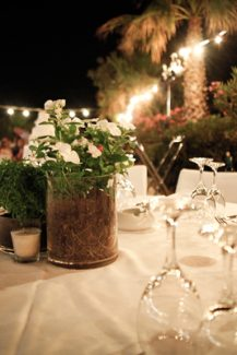 Στολισμος γαμου με φυτα και λουλουδια