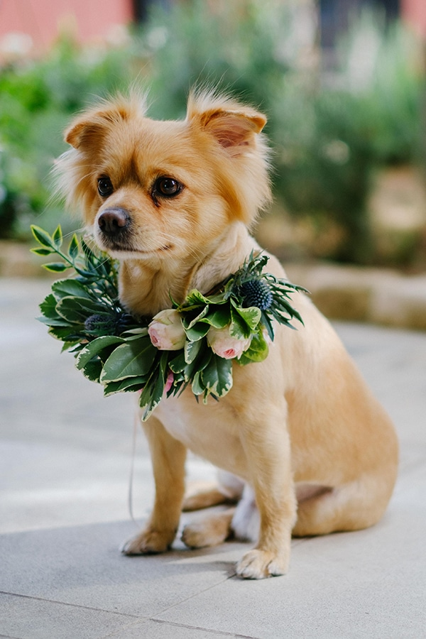 the-cutest-styled-shoot-flower-girl-dresses_41