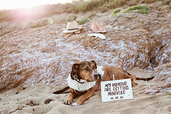 beautiful-prewedding-beach-photoshoot-_07x