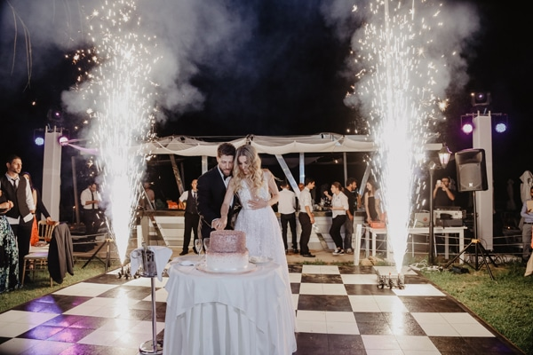 romantic-summer-wedding-larnaca-hydrangeas-dusty-pink-details-_21